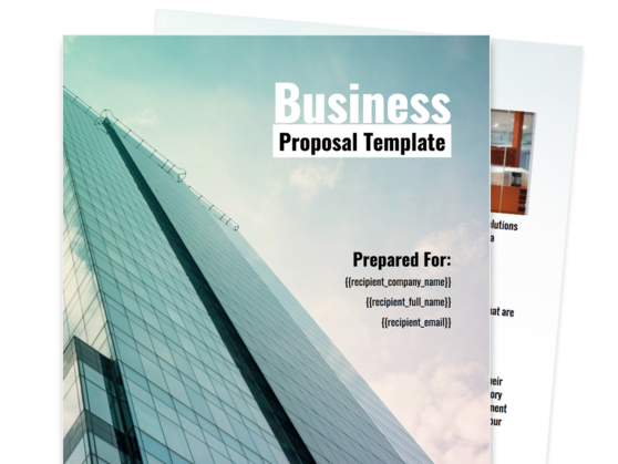 Business Proposal Template  Company Proposal Format