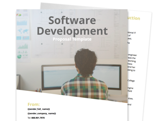 Software Development Proposal Template  Commercial Proposal Template