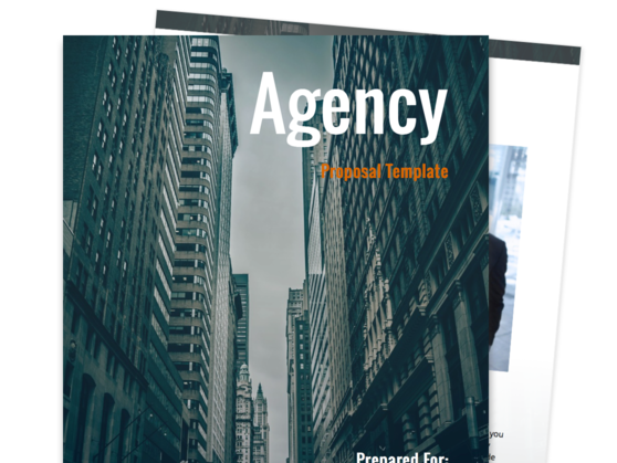Agency Proposal Template  Free Proposal Template